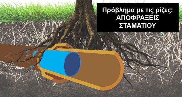 ΑΠΟΦΡΑΞΕΙΣ ΨΥΡΡΗ - ΡΙΖΕΣ ΔΕΝΔΡΩΝ